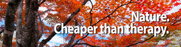 Nature is Cheaper Than Therapy